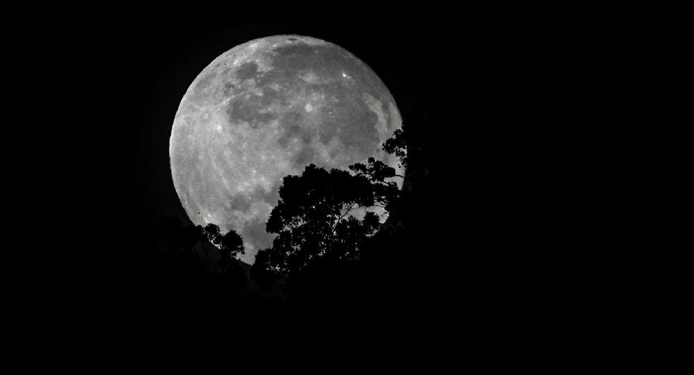俄科學家:中國探測器將在月球備受關注的區域進行土壤取樣