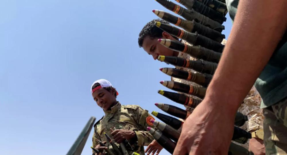 聯合國專家認為土耳其與俄羅斯等國違反對利比亞的武器禁運
