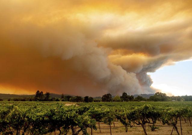 美加利福尼亞州野火