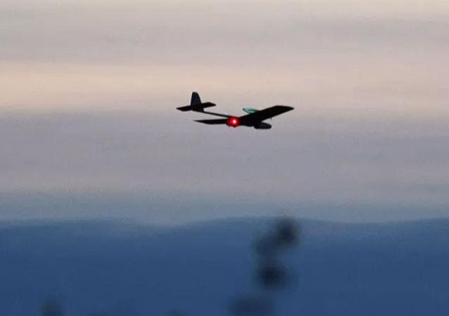 俄防長:俄羅斯反無人機系統性能比外國產品優秀數倍