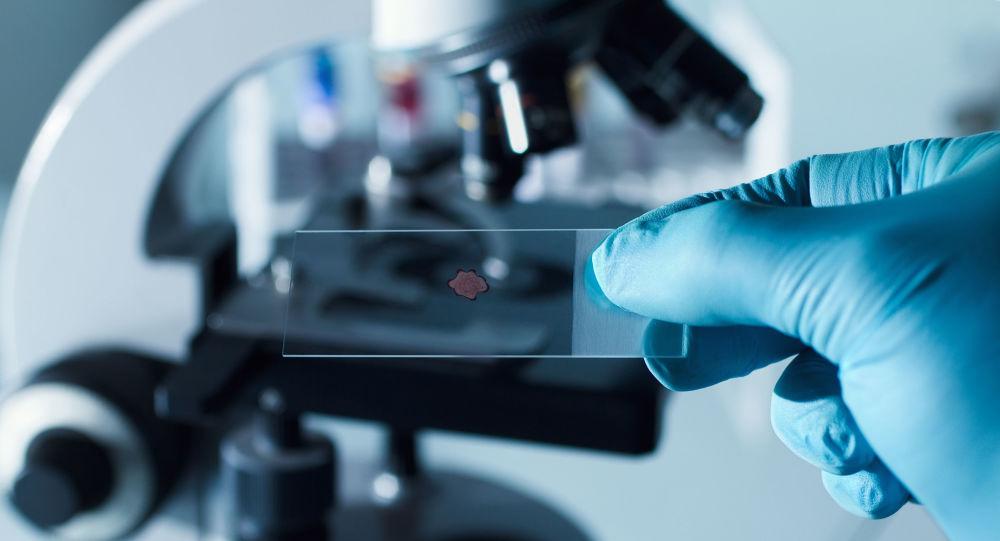 俄中新冠病毒聯合研究實驗室將於2021年首次取得成果