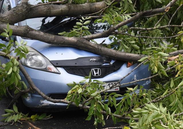 俄濱海邊疆區因颱風「美莎克」損失或達265萬美元