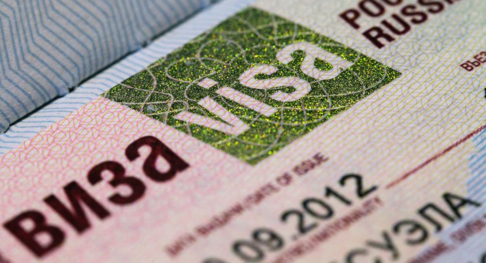 俄羅斯討論簡化外國遊客獲取電子簽證程序的問題
