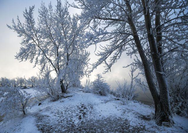 俄羅斯漢特-曼西自治區氣溫降至零下45度 中小學因此停課