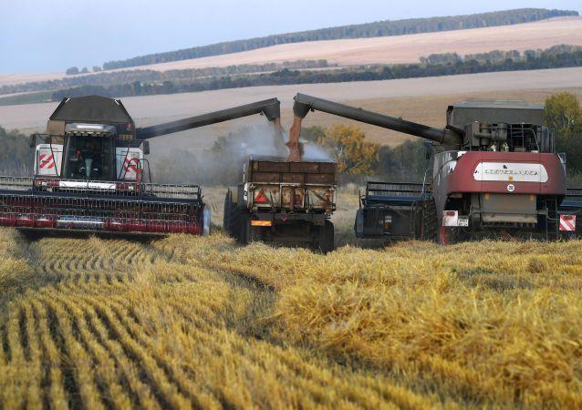 俄羅斯科學家為農民創造全球首套「智慧耕作」系統