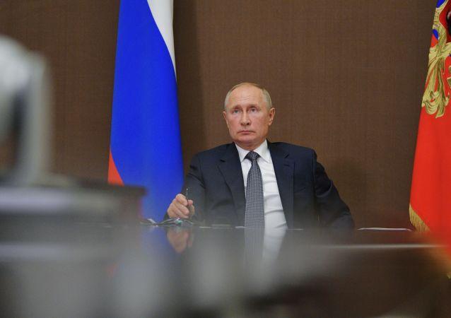 普京:俄木材及其交易登記系統應於明年起試運行