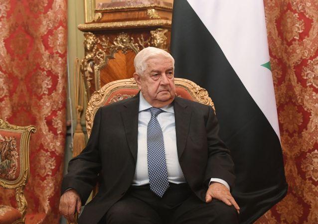 敘利亞外交部長瓦利德•穆阿利姆