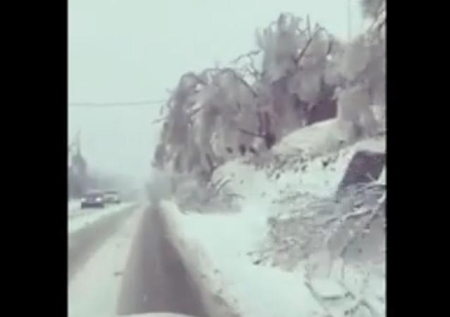 濱海邊疆區因暴風雪全區進入緊急狀態