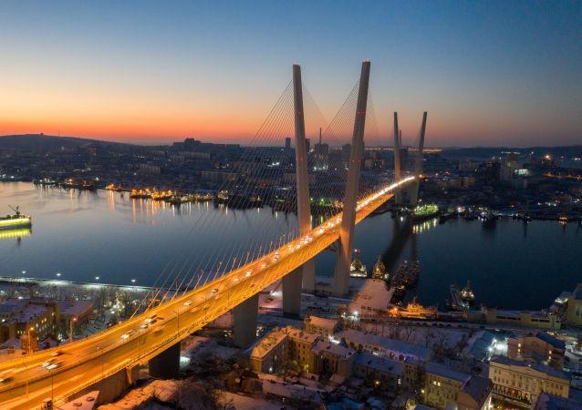 俄副總理:遠東吸引外國投資在全俄佔比超過30%