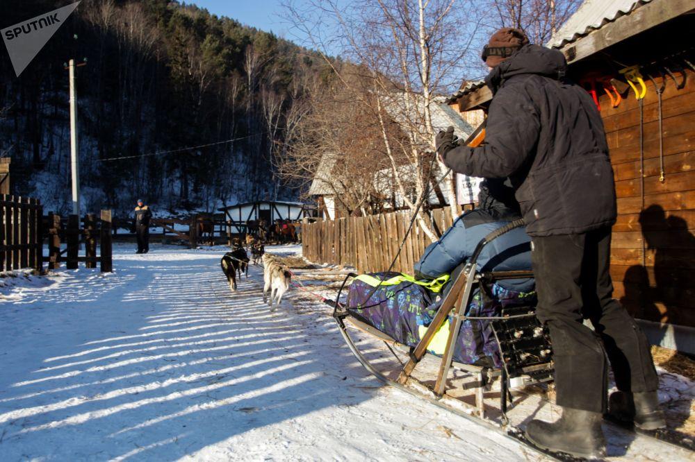 遊客在貝加爾湖利斯特維揚卡小鎮乘坐狗拉雪橇