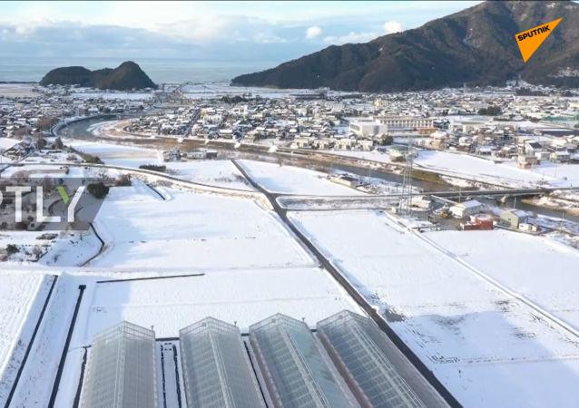 日本福井縣大雪圍城
