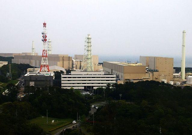 日本濱岡核電站