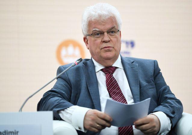 俄常駐歐盟代表弗拉基米爾•奇若夫
