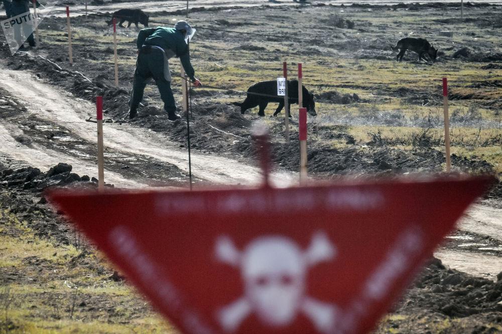 阿塞拜疆境內進行掃雷排爆作業。