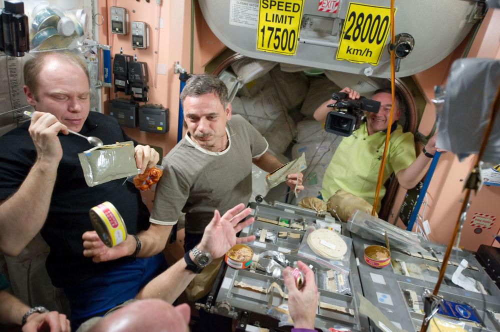 國際空間站第23次組員。