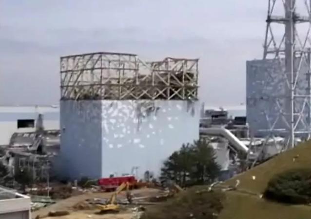 專家和環保激進分子對日本當局決定將福島一號核電站的廢水倒入海洋的行為發表評論說:「沒人會為此負責」