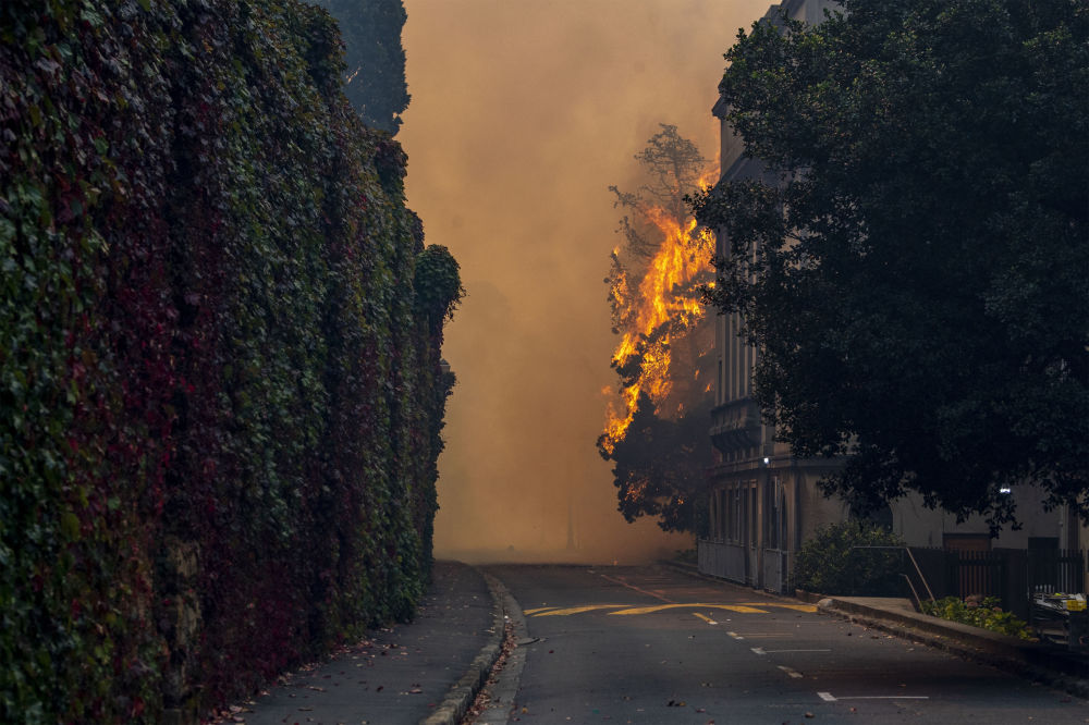 開普敦發生森林大火