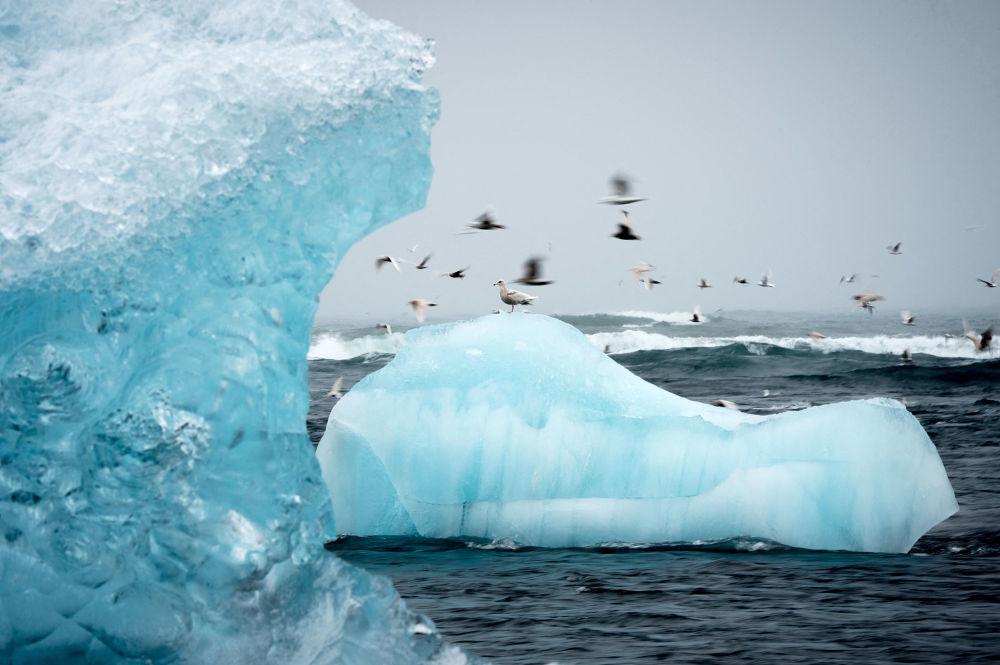冰島傑古沙龍瀉湖。