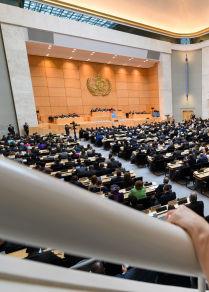 台灣未獲邀請參加世衛大會