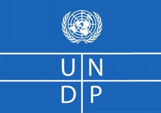 聯合國開發計劃署