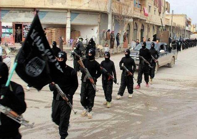 俄外交官:打擊IS國際聯盟的行動引發尖銳危機