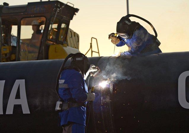 俄能源部長:俄副總理將在北京討論西線對華供氣