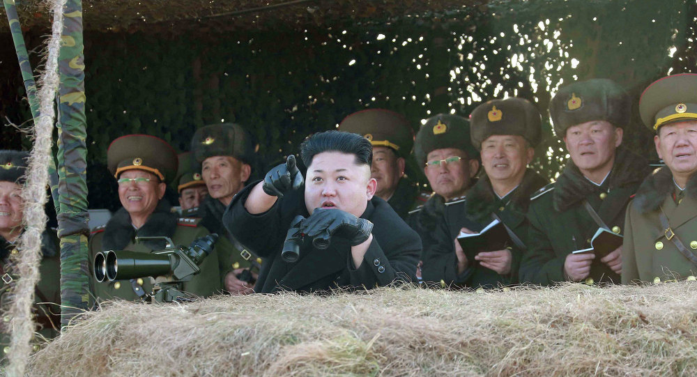 朝中社:朝鮮已通過研發無人機和智能武器的決議