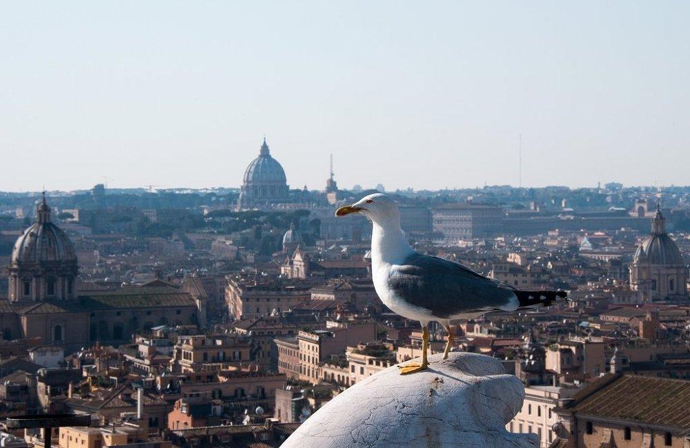 意大利 - 羅馬