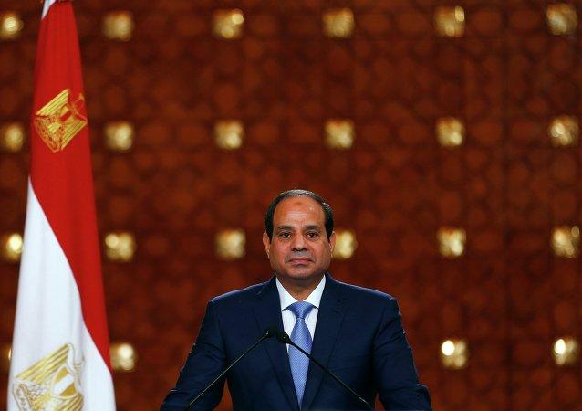 媒體:埃及總統調任11省省長