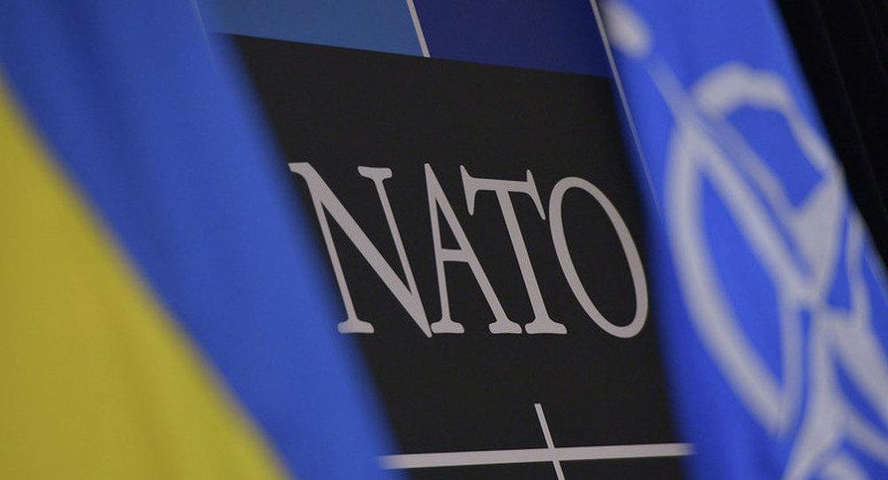 北約副秘書長:該組織未改變烏克蘭地位