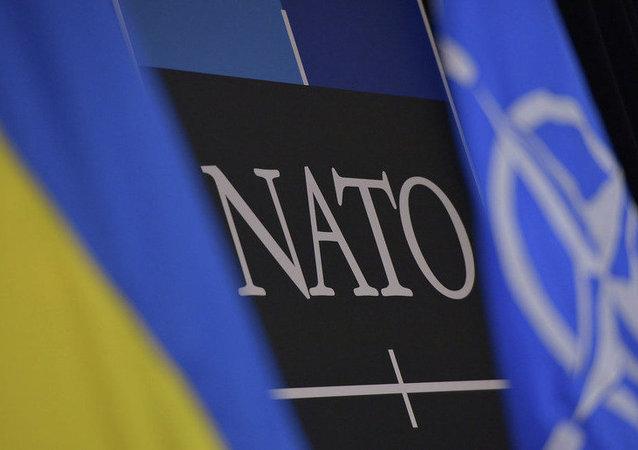 俄總統新聞秘書:烏克蘭獲得北約夥伴國地位無助於鞏固歐洲安全
