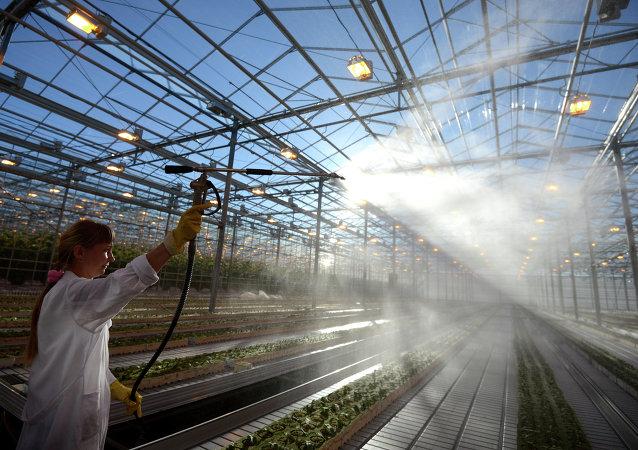 俄直接投資基金會總裁:該基金或將在5月與中國簽訂工農業領域協議