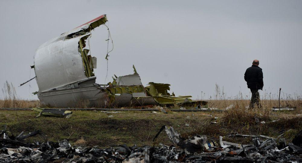 俄羅斯聯邦航空運輸署:俄提出要考慮頓巴斯地區空難的所有版本