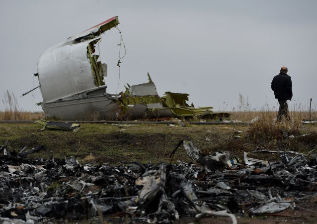 普京:在調查馬航MH17悲劇中俄羅斯的論據未被考慮