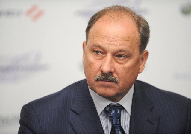 俄羅斯對外經濟銀行行長弗拉基米爾·德米特里耶夫