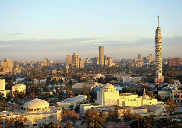 埃及政府宣誓就職