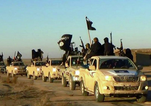 美國情報部門早已知情伊斯蘭國的增長能力