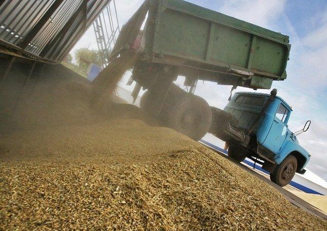 佳沃集團子公司將對華出口俄阿穆爾州農產品