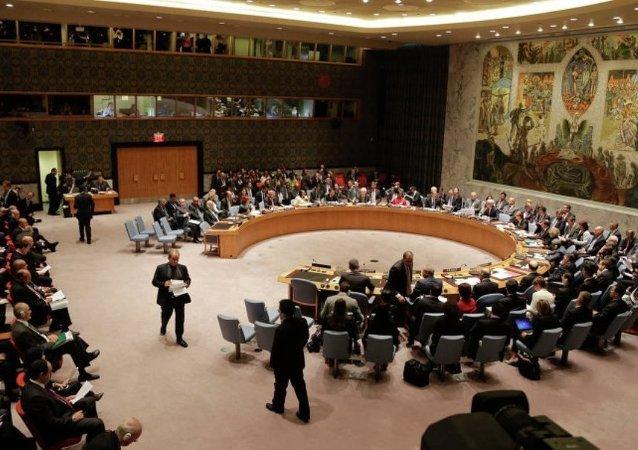 俄羅斯專家:聯合國安理會改革時機已經成熟,但並不能一蹴而就