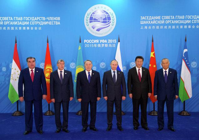 在烏法舉行的上合組織峰會