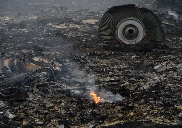 荷蘭外交大臣不排除將基輔列為馬航МН17客機墜毀事件責任方的可能