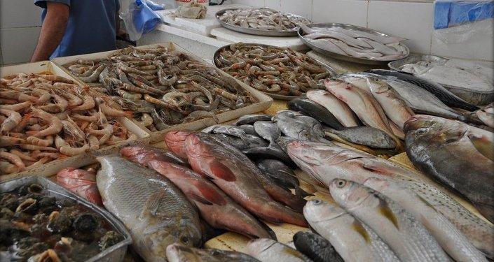 在最近5-10年時間里,世界漁業產量將'觸頂'。每年可收穫約9000萬噸。