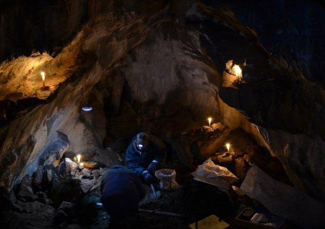 在巴什基里亞發現巨大的穴居時代獅子遺骨