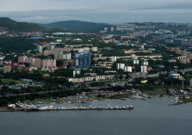 俄總統駐遠東代表:不會評價符拉迪沃斯托克自由港入駐企業商業計劃