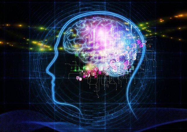 科學家介紹如何延緩大腦衰老