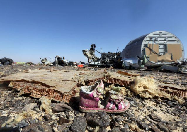 俄航空運輸署:俄A321客機空難調查不應先推斷後取證