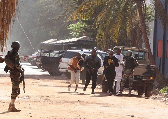 外媒:馬里發生襲擊導致至少134人死亡