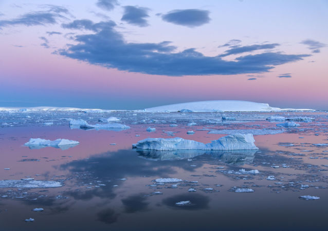 日本無視國際法庭禁令,計劃在南極洲恢復捕鯨業