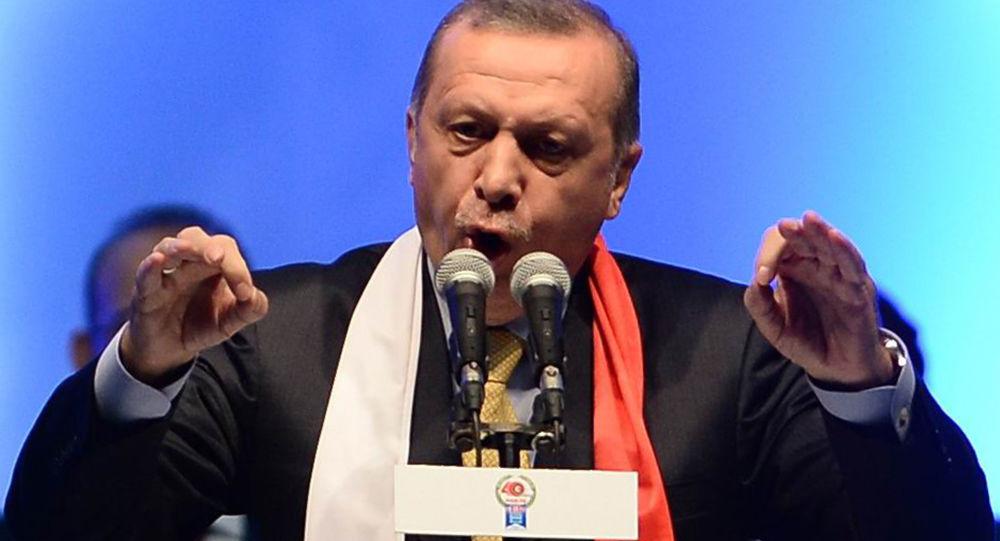 埃爾多安宣佈敘「安全區」設施配備計劃
