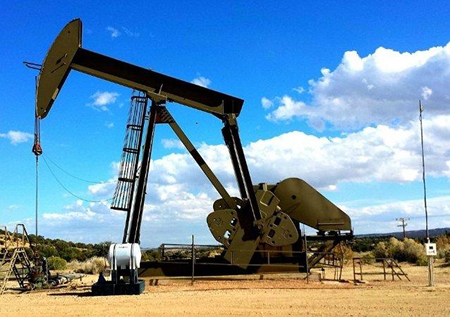 埃及億萬富翁預測石油價格將增長到每桶100美元